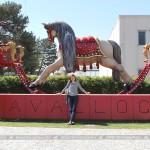 museodelcavallo_2